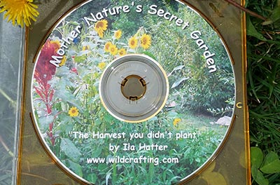 Mother Nature's Secret Garden